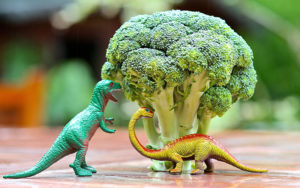 Toy dinosaurs pretending to eat broccoli