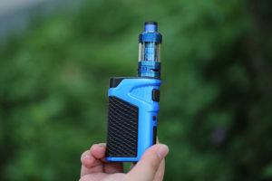 electronic nicotine vaporizer