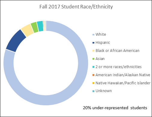 Saint Anthony College of Nursing Ethnicity Graph