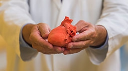 innovation-education-3D-heart.jpg