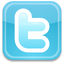 Twitter (Icon)