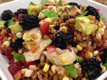 Grilled Chicken and Berry Avocado Salad